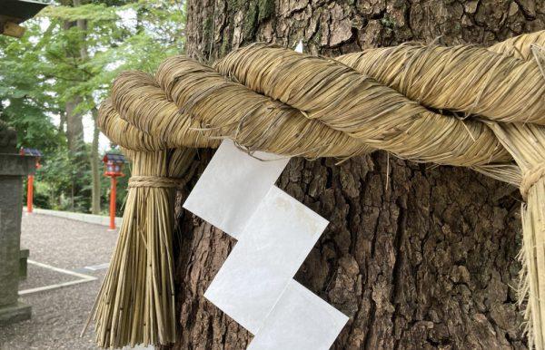 しめ縄、紙垂、総取り替え